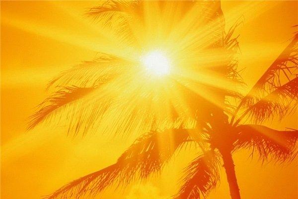 افزایش گرما در استان بوشهر/ دمای هوا به ۵۰ درجه میرسد