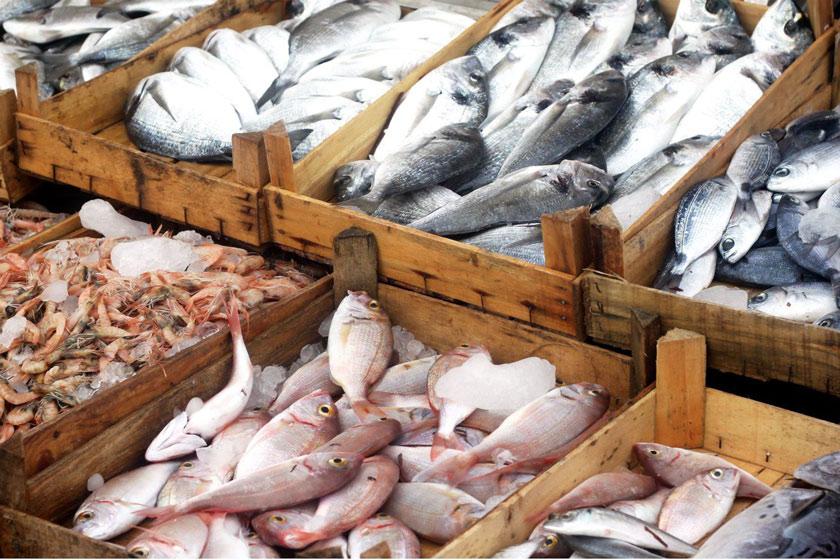 بازار آشقته ماهی کی آرام می گیرد؟