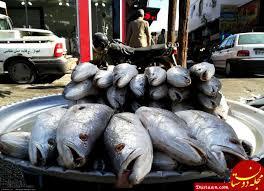 بازارچه ماهی در بوشهر راهاندازی شد