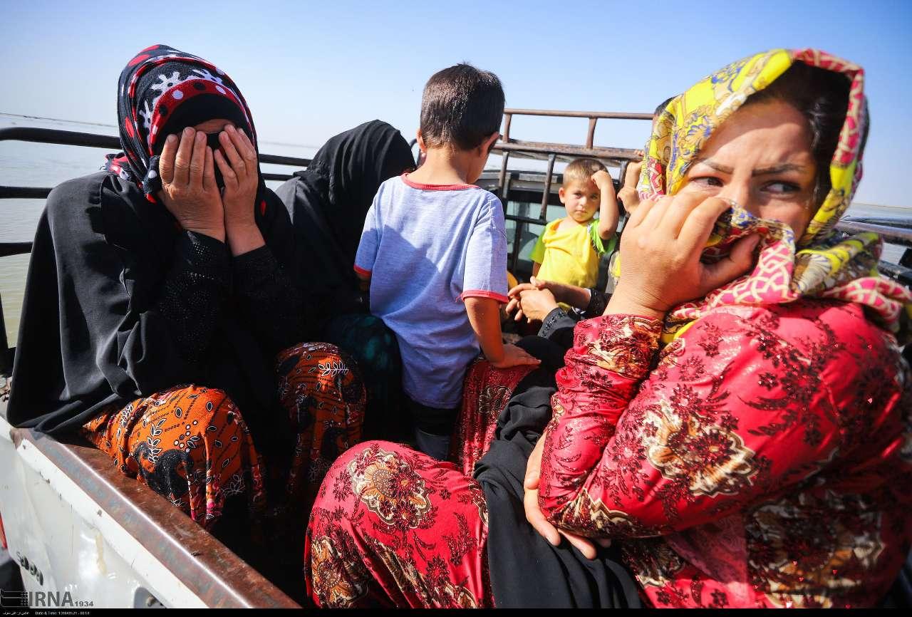 ۳ هزارخانوار روستایی استان بوشهر هیچ بیمهای ندارند