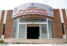 ساخت بیمارستان ویژه بیماران سرطانی در بوشهر